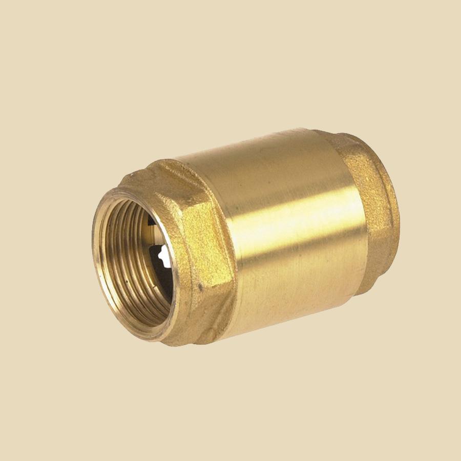 Clapet anti-retour DN10 FxF pour eau glycolée -10°C